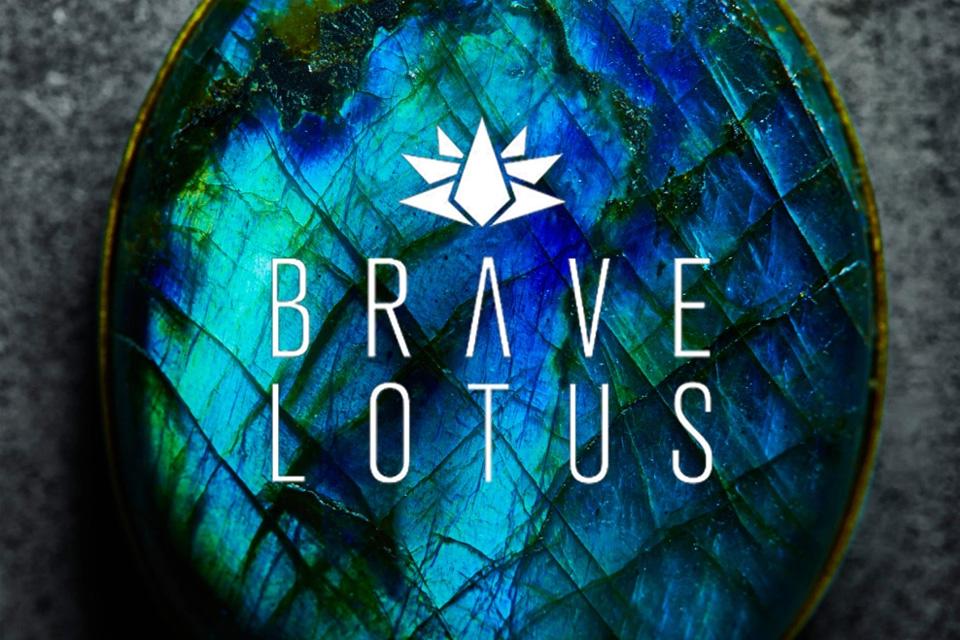 Brand Focus: Brave Lotus
