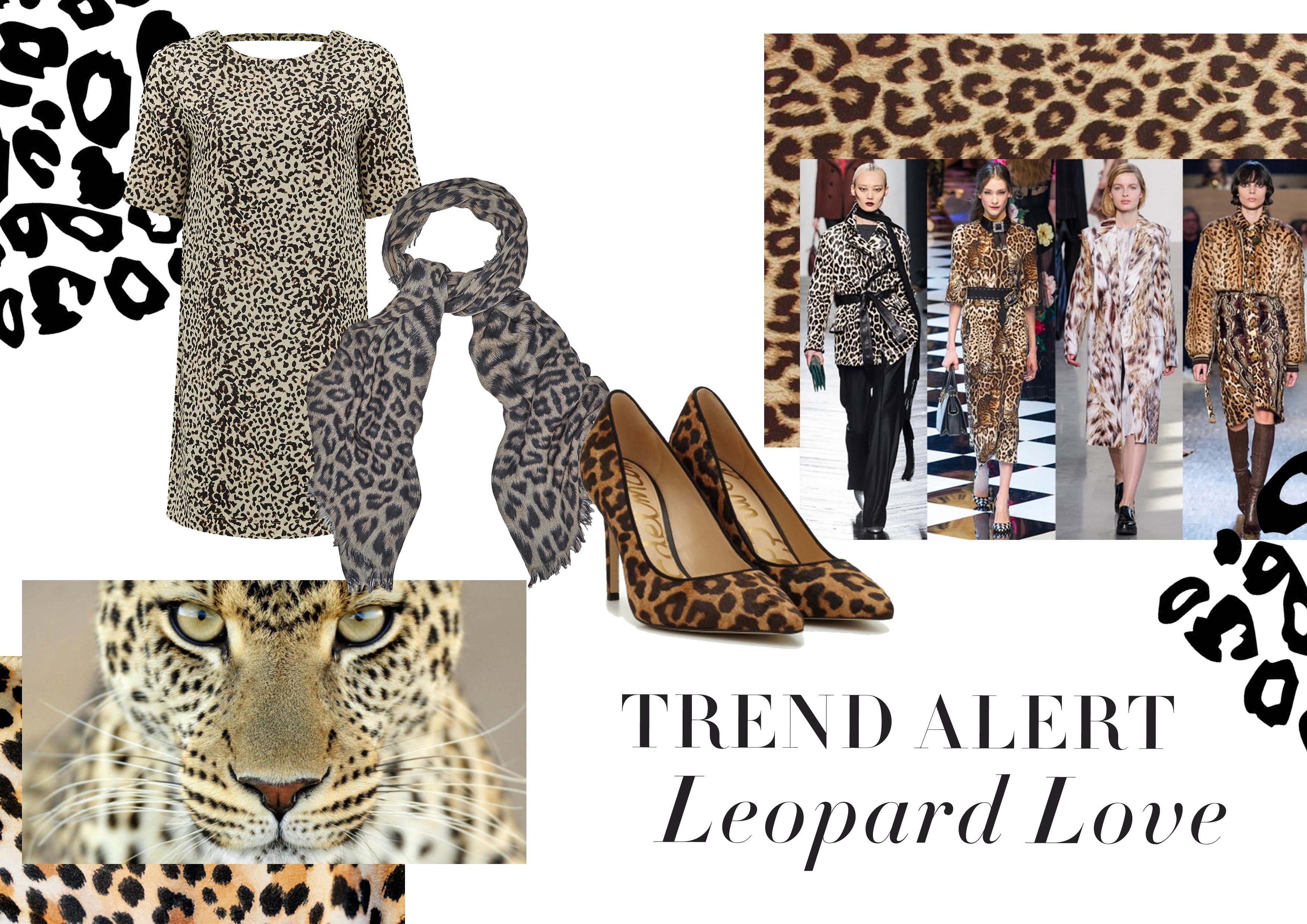 Trend Alert: Leopard Love