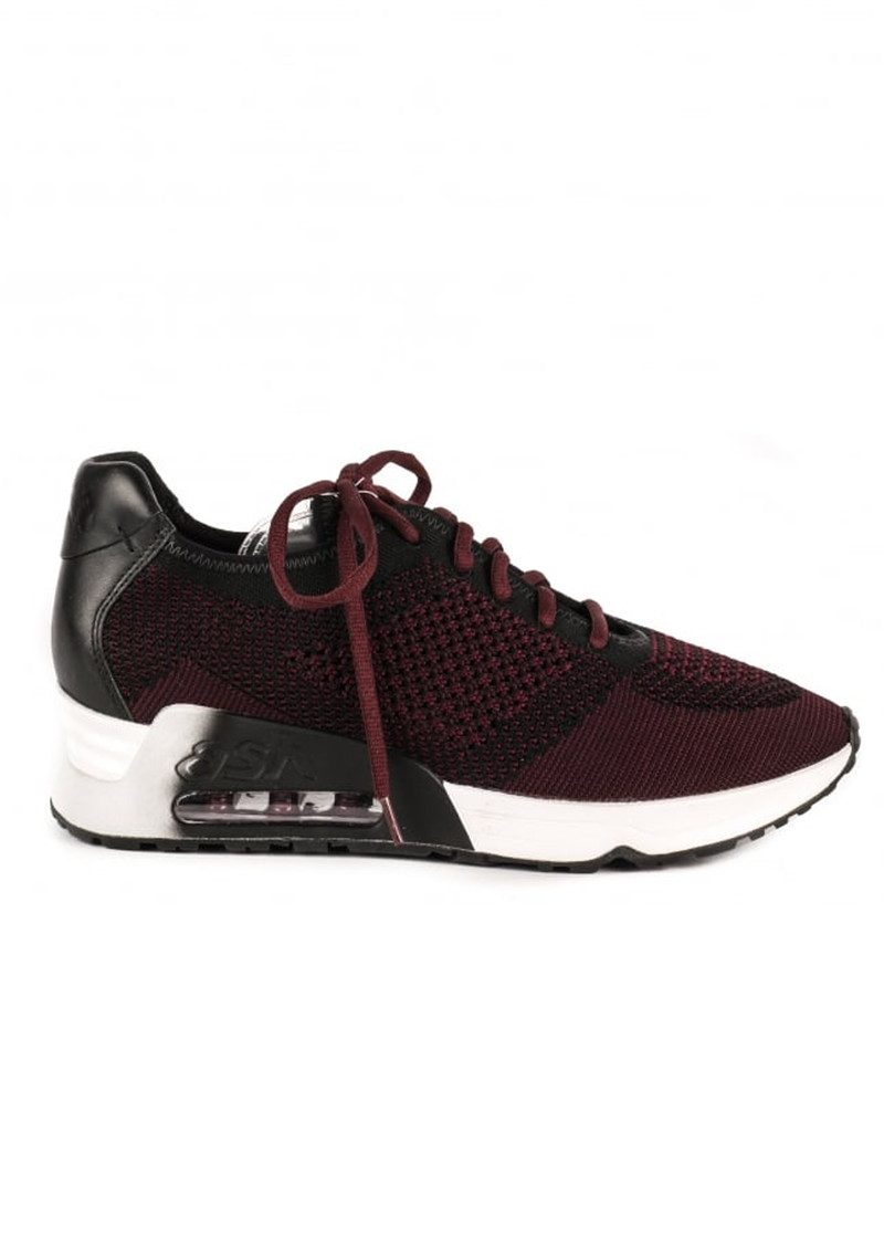 Ash Lucky Knit Trainers - Black & Borolo main image