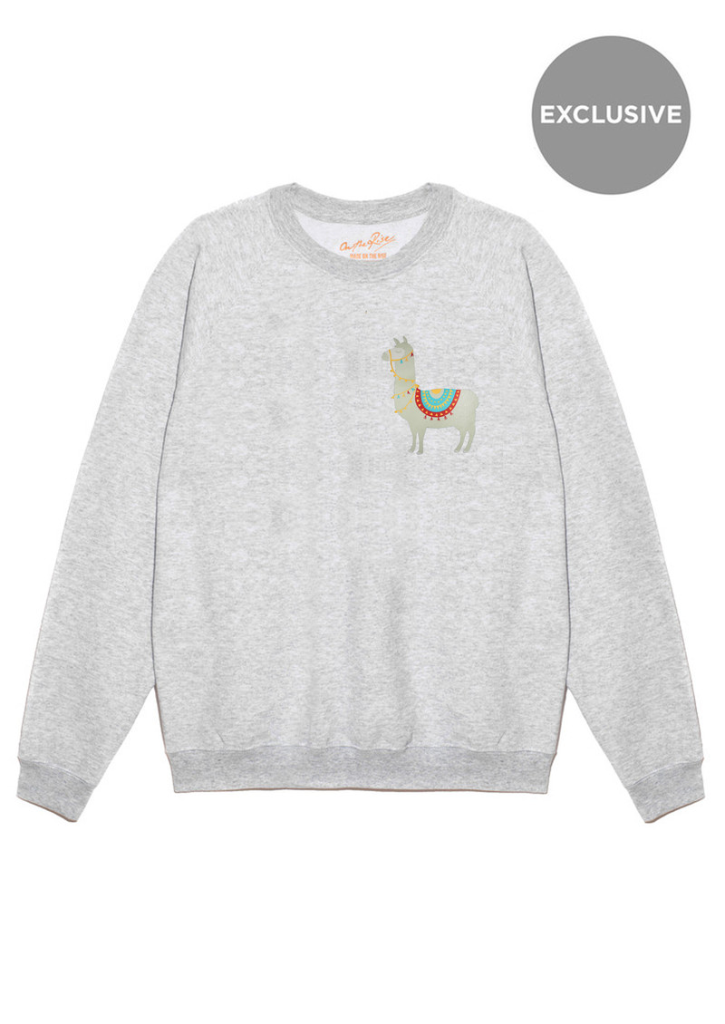 ON THE RISE Exclusive Llama Jumper - Grey main image