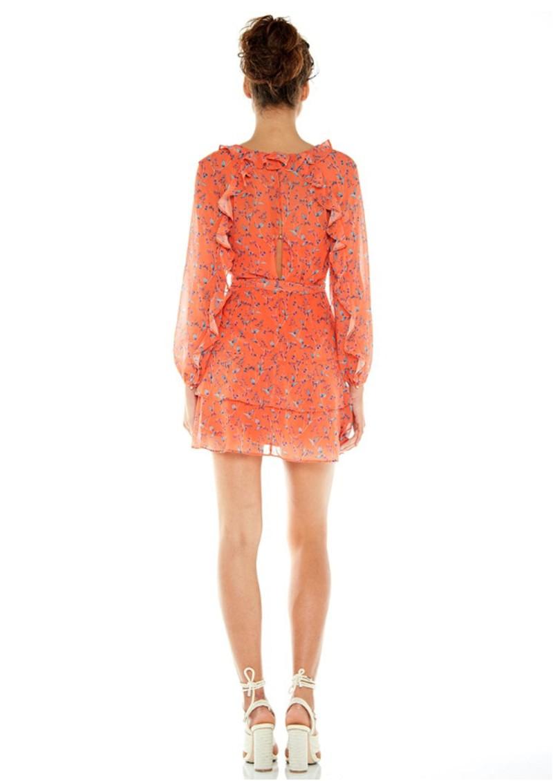 TALULAH Daring Day Long Sleeve Printed Dress - Bonnie Floral main image