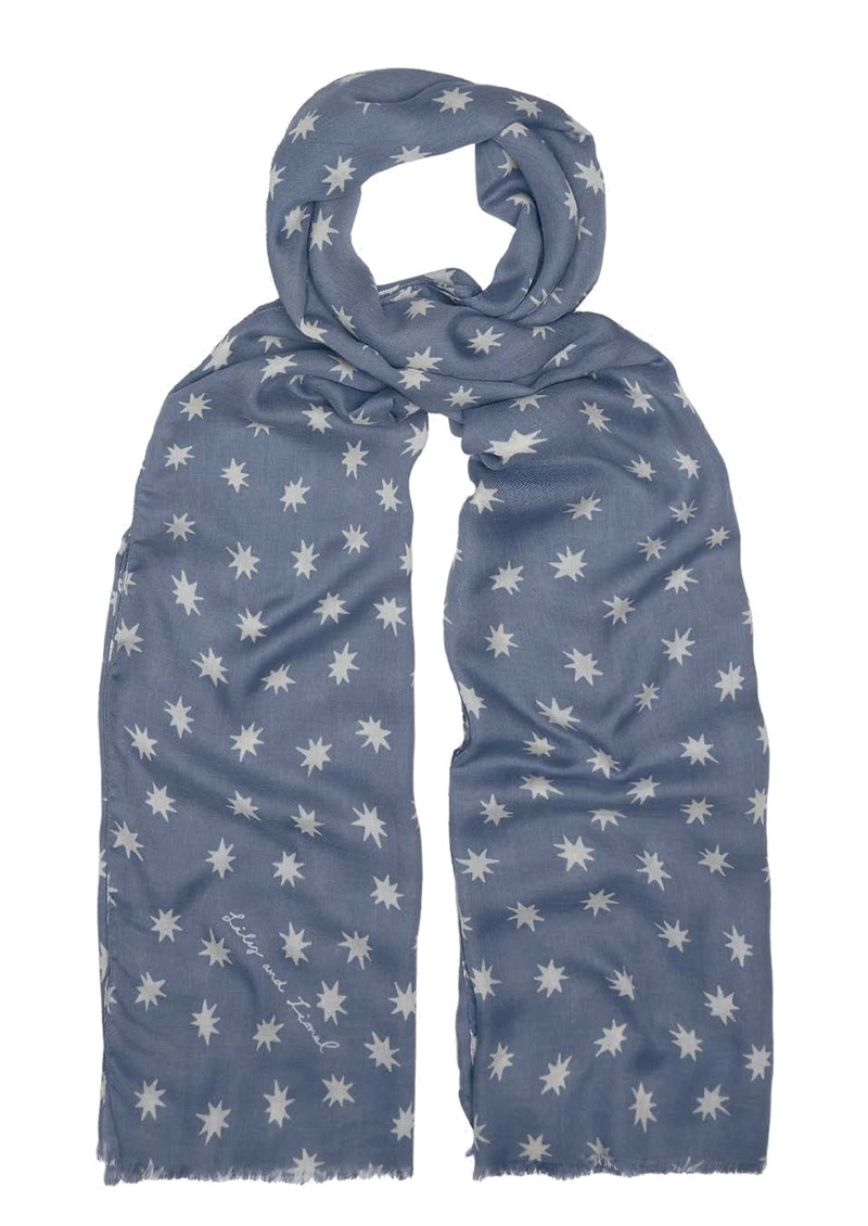 Lily and Lionel Cosmos Scarf - Denim main image
