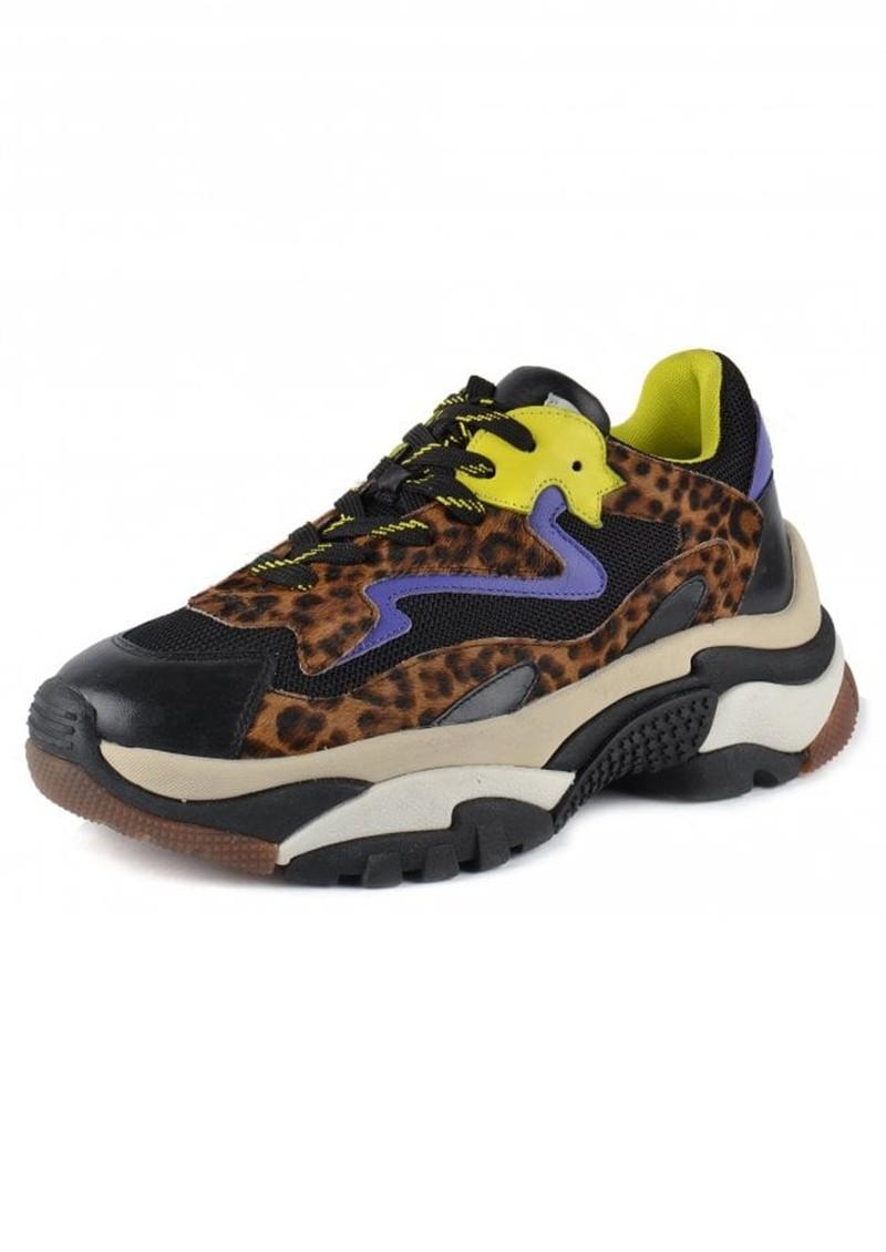 Ash Addict Leopard Print Trainers - Black, Lime & Purple main image
