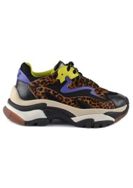 Ash Addict Leopard Print Trainers - Black, Lime & Purple