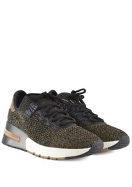 Ash Krush Bis Knitted Trainer - Black & Gold