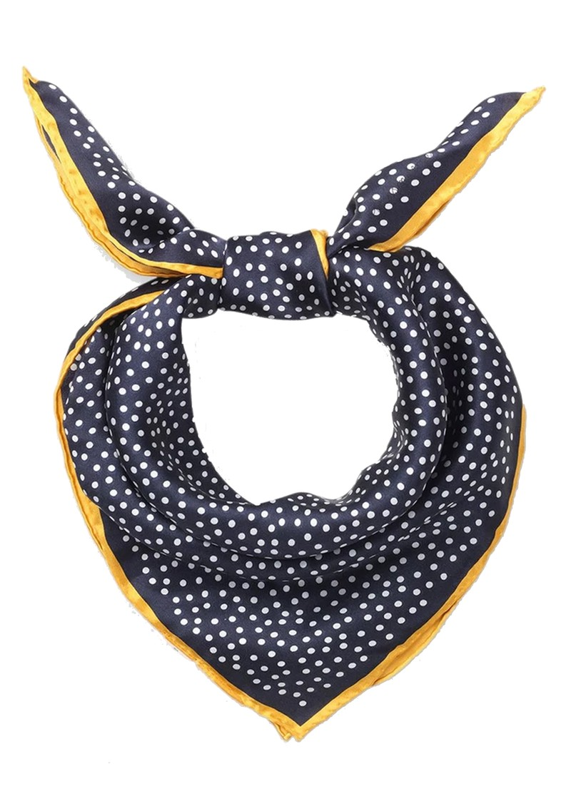 Dylan Dot Silk Scarf - Navy main image