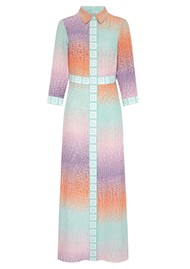 HAYLEY MENZIES Long Silk Shirt Dress - Ombre Crocodile Pastel