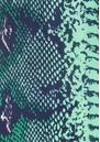 Mercy Delta Blair Silk Top - Python Jungle