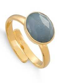 SVP Atomic Midi Adjustable Ring - Gold & Angelite