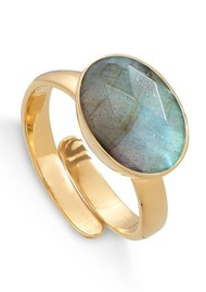 SVP Atomic Maxi Adjustable Ring - Gold & Labradorite