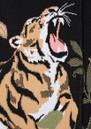 Roaring Tiger Cotton Duster Cardigan - Black additional image