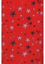 Wray Silk Skirt - Starfish Wild additional image