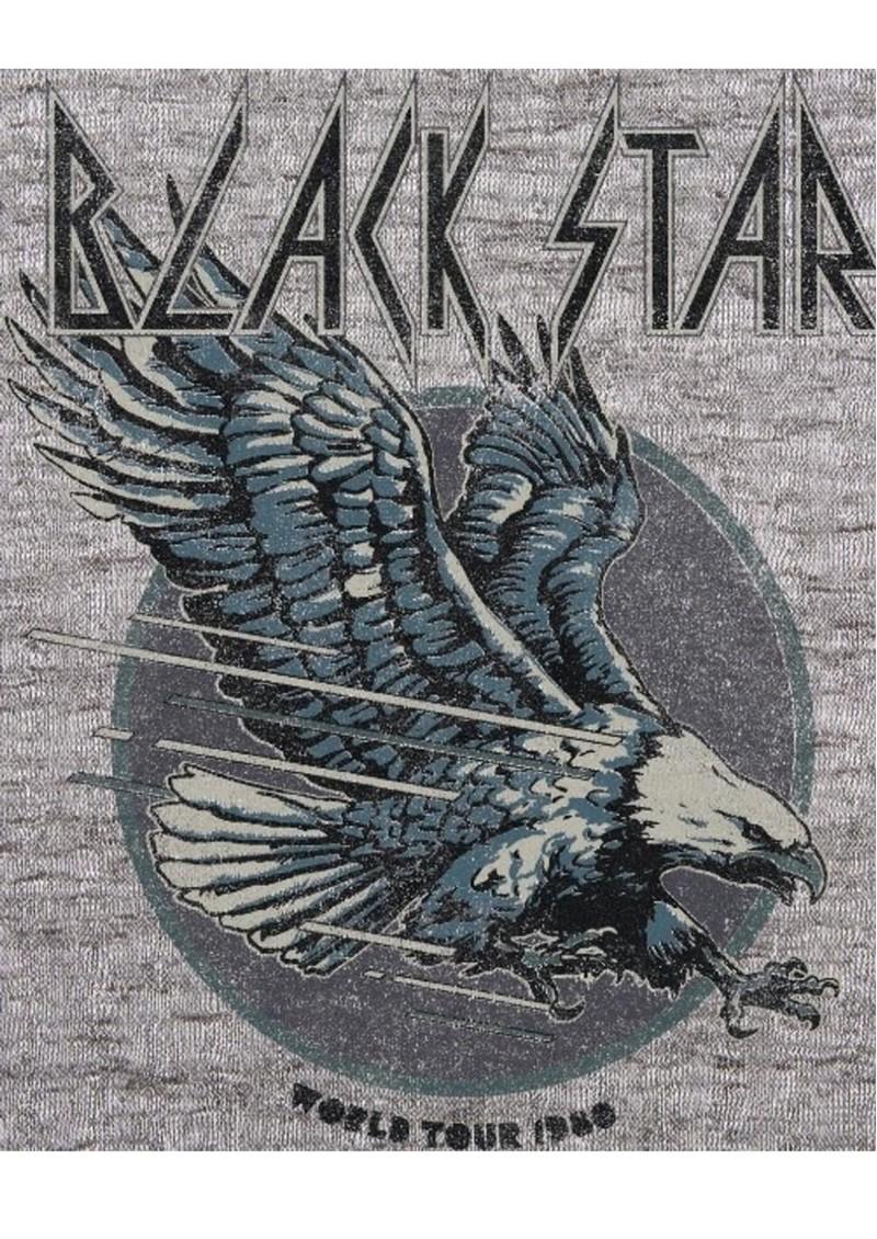 BLACK STAR Eagle Organic Cotton Tee - Vintage Light Grey main image