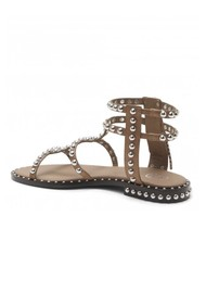 Ash Power Studded Sandal - Fango