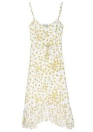 Rails Adalyn Printed Dress - Buttercup