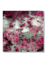 Agate Silk Scarf - Pink additional image