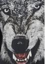TEXTILE REBELS Wolf Jumper - Black